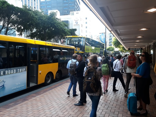 Wlg bus